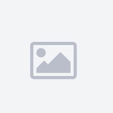 H8 6000k Lampada xenon originale Xenovision per kit 35W - Plug Ket